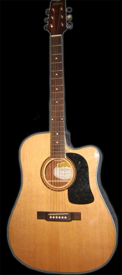 Washburn D10SCE electric acoustic (2004)